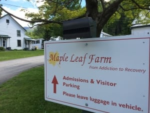 Maple-Leaf-addiction-vermont