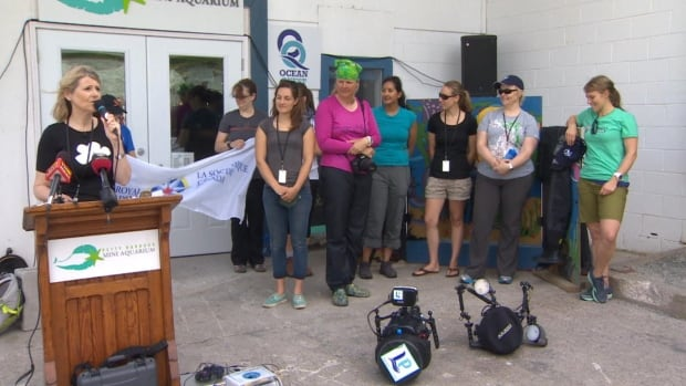 The 10 brave women of the Sedna Expedition will set sail on a fishing boat from Nain, Labrador, to Baffin Island, and on to Greenland, snorkelling along the way.