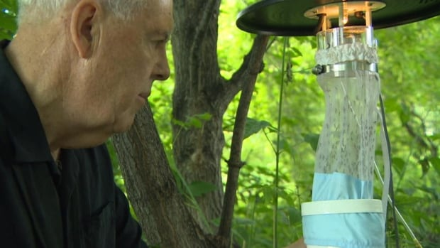 Phil Curry, Saskatchewan's West Nile Virus coordinator, checks out a mosquito trap.
