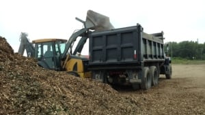 Fredericton crews dump wood waste from storm Arthur