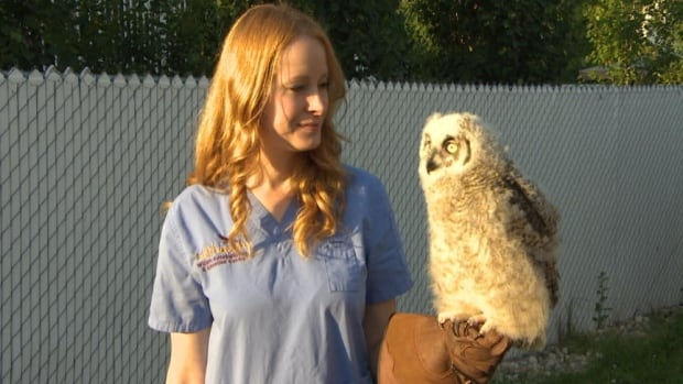 Megan Lawrence, of Salthaven West, with one of the centre's owls.