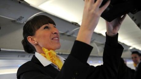stewardess flight attendant baggage carry-on