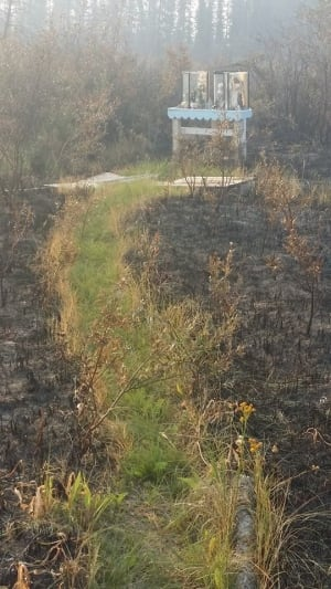 Wildfire leaves roadside shrine untouched
