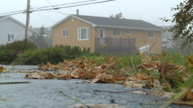 Leaves clutter the yards of Eastern Passage.