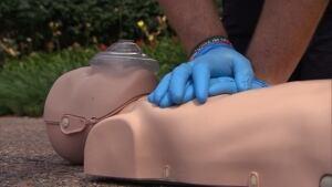 CPR doll