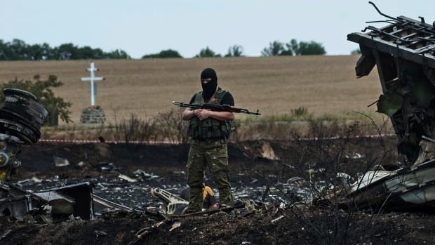 A pro-Russian fighter guards the crash site of Malaysia Airlines Flight 17 near the village of Hrabove.