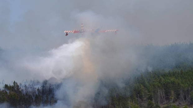 A water bomber tried several times Monday to knock out a fire that had started in the Kelligrews area of Conception Bay South the previous night.