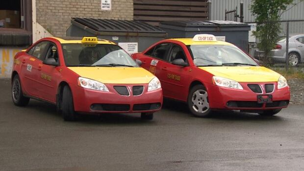 A group of taxi drivers in St. John's is hoping the city will follow in the steps of Calgary and start fining passengers who vomit in cabs.