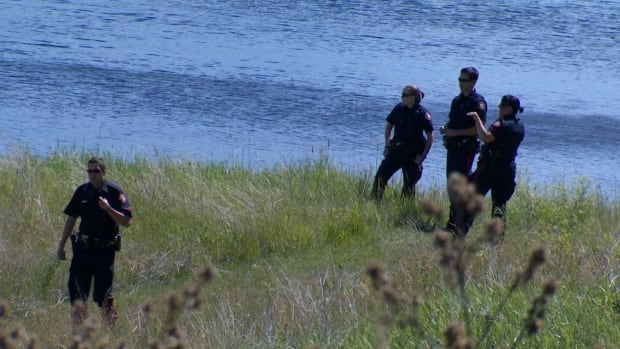 A body was pulled out of an Abbeydale pond Wednesday afternoon.
