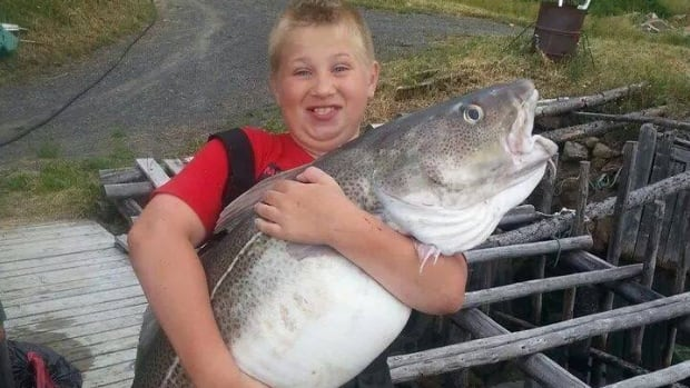 10-year-old Koby Rice props up the 49-pound codfish that his mother caught near New World Island in Notre Dame Bay.