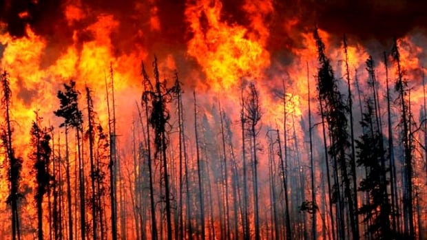 A coming week of hot, dry weather across much of B.C. is raising the alarm with wildfire-fighters.