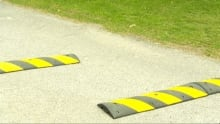 Speed bumps pathway
