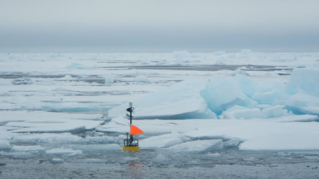 Wave sensors record the height of waves. A researcher is currently on the Beaufort Sea deploying more of them.