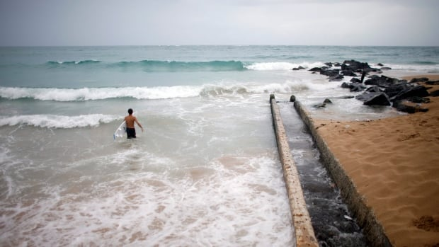 A surfer enters the water to take advantage of the high waves in San Juan Saturday as Tropical Storm Bertha pushed just south of Puerto Rico.