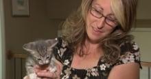 Katie Jones Ottawa Stray Cat Rescue