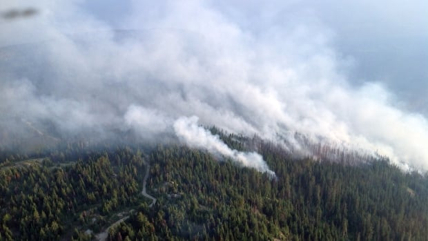 The Slocan Park fire shown here was burning over 120 hectares on Friday August 8. Fire officials warn the fire hazard is high to extreme in Southeastern B.C.