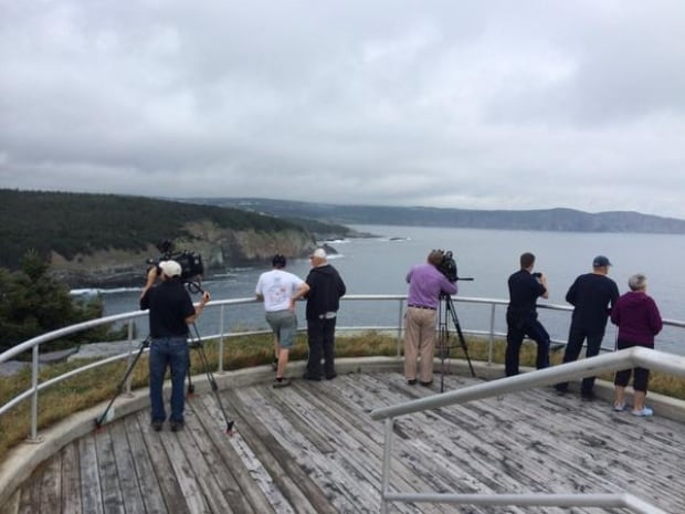 Media gathered above Middle Cove