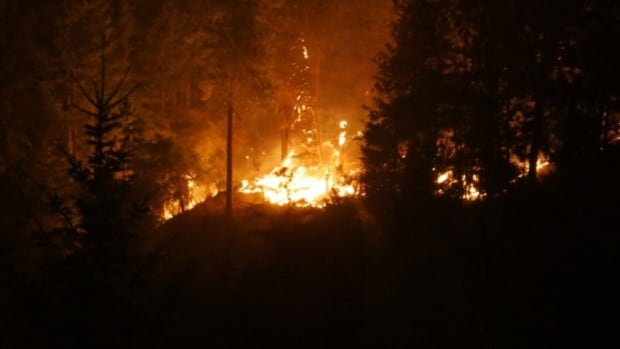 A 40-hectare wildfire burns near Highway 97C early Friday morning. Australian firefighters are on their way to help with the firefighting efforts of several Canadian provinces.
