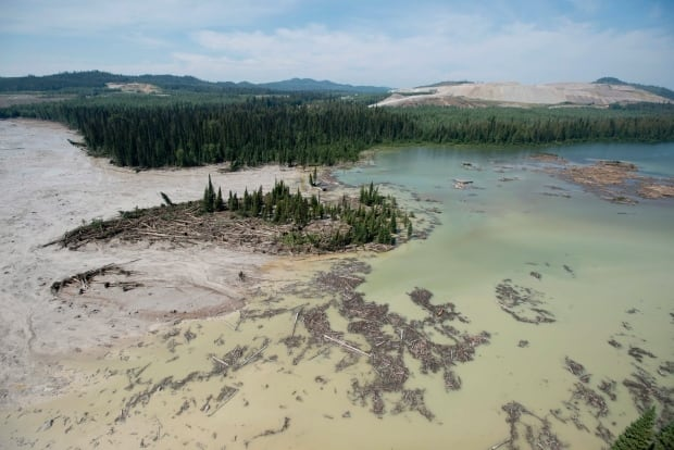 Tailings pond breach, Mount Polley mine