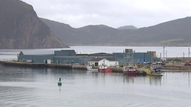 The salmon processing plant in Harbour Breton won't open for another six months.