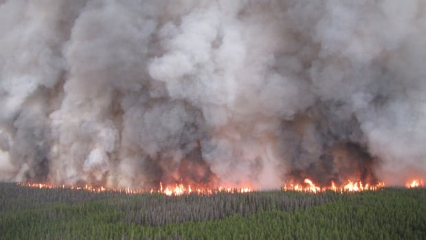 The largest fire of the year occurred near the Chelaslie River near Burns Lake, consuming 1,330 square kilometres. It's still burning, but 75 per cent contained.