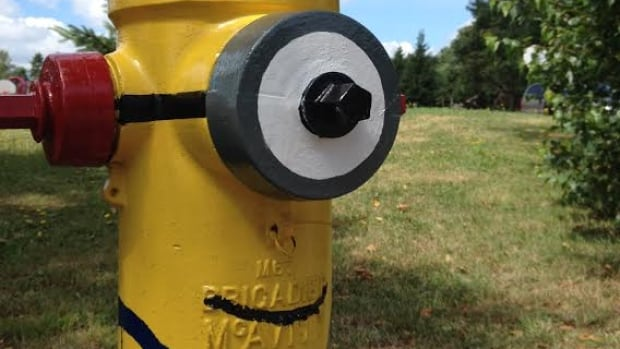 This one-eyed minion hydrant is on Princess Drive in front of Montague consolidated school.