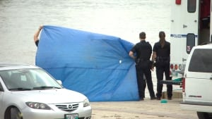 Body pulled from Alexander Docks