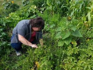 community gardening with Lynn Simard-McMurray