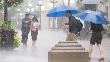 Rain heavy rainfall Ottawa generic shower umbrellas