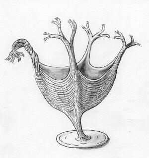 Artist reconstruction of Haootia quadriformis organism