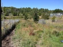 Moose enclosure