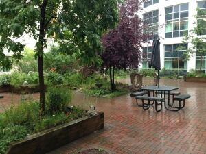 thunder bay hospital garden