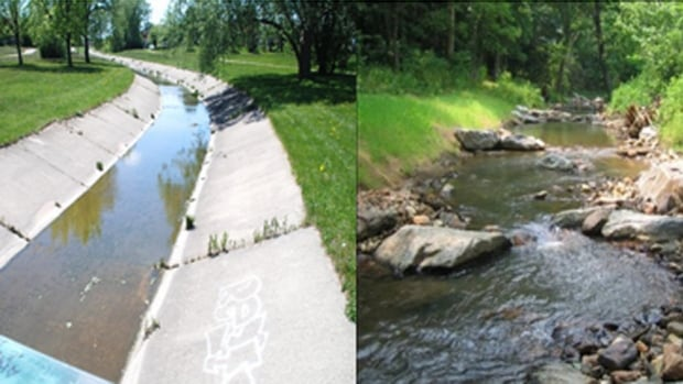 On the left, the existing Filsinger Park Channel, and on the right, an example of what the city of Kitchener hopes the channel could resemble after the naturalization process.
