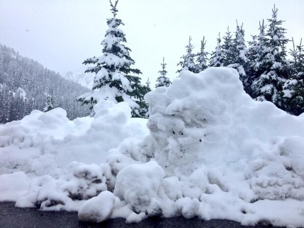 Snow in Highwood Pass