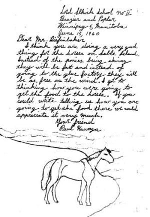 Sable Island horse schoolchildren letter