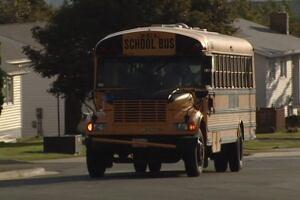 School bus in Southlands area of St. john's