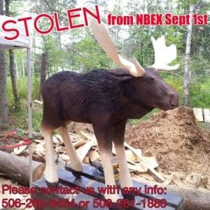 hl-stolen-moose