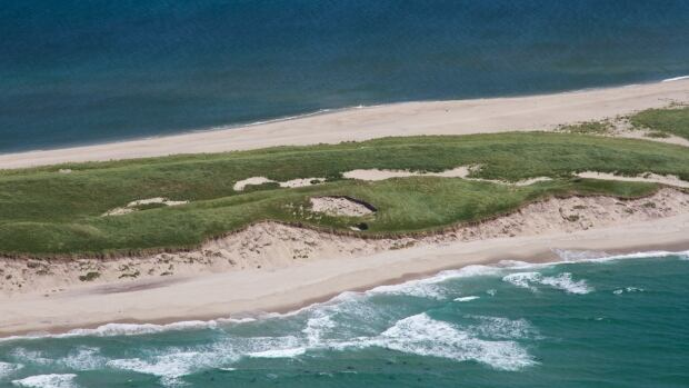 Megan Leslie, the MP for the area that includes Sable Island, says the bill to create the Sable Island National Park Reserve isn't perfect but it's a step in the right direction.