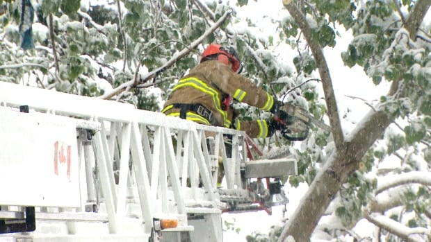 Emergency crews have been kept busy dealing with snow-laden tree branches that have fallen on power lines all around Calgary.