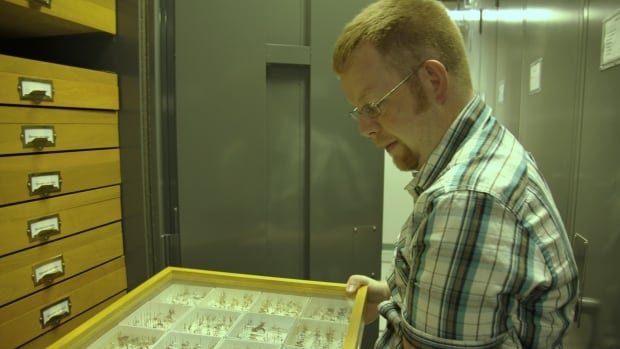 Entomologist Morgan Jackson is using Twitter, Instagram to make new discoveries.