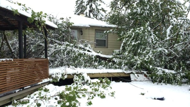 Some Calgary homeowners who lost power in this week's snowstorm are discovering that they must first contract a private electrician to fix damaged lines on their properties before Enmax will come and re-energize.