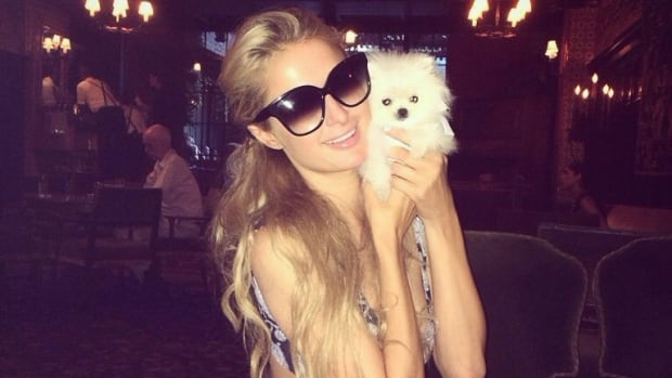 Paris Hilton happily announced -- via Twitter, from the Bowery Hotel in New York -- the arrival of her new puppy from Calgary.