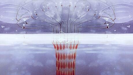 Printalive Bioprinter