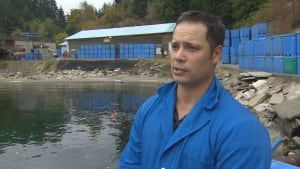 Cam Pirie, general manager Walcan Seafood on Quadra Island