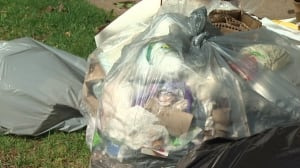 Clear trash bags could be mandatory in Halifax next year.