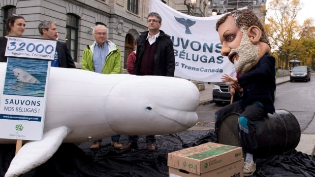 People demonstrate to save the belugas and stop the TransCanada Cacouna pipeline terminal project, outside the National Assembly in September in Quebec City.