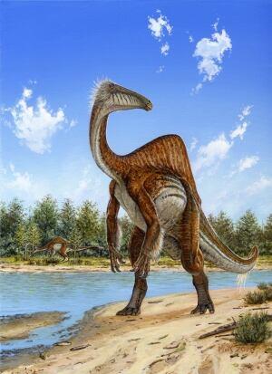 size to Tyrannosaurus ...