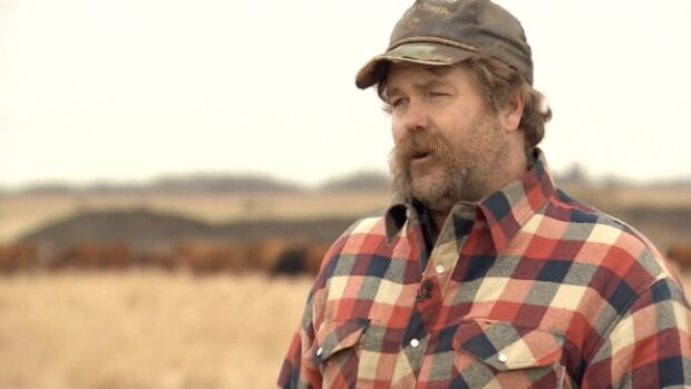 Dan Brown chose to bring his cows home from pasture a month early this year rather than leave them vulnerable to the wolf pack that's moved in near their pasture lands.