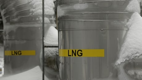 LNG project's 190 conditions 'not onerous,' says environmental assessment expert