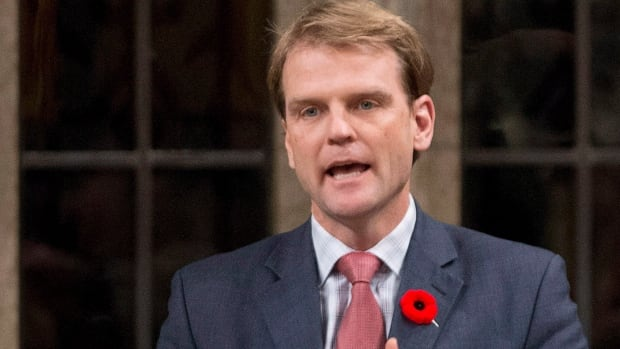 Citizenship and Immigration Minister Chris Alexander speaks in the House of Commons on Monday November 3, 2014 in Ottawa. Criminal defence lawyers are dismayed that Alexander publicly branded a man charged with killing his wife a murderer before his trial.